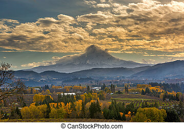 Mount Hood Over Farmland in Hood River in Fall