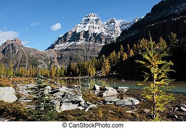 Mount Huber and Opabin Plateau, Yoho National Park, Canada -...
