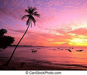 Mount Irvine bay at sunset, Tobago.