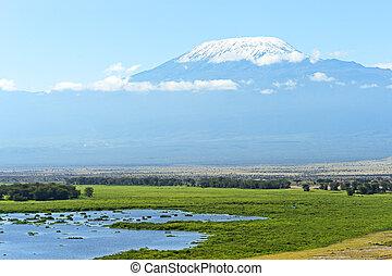 Mount Kilimanjaro in the African savannah in Kenya