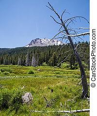 Mount Lassen National Park, Califor