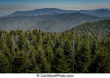Mount LeConte From Clingmans Dome in Early Summer