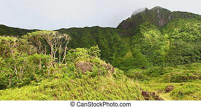 Mount Liamuiga - Saint Kitts