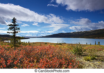 Mount McKinley from Wonder Lake with colourful landscape