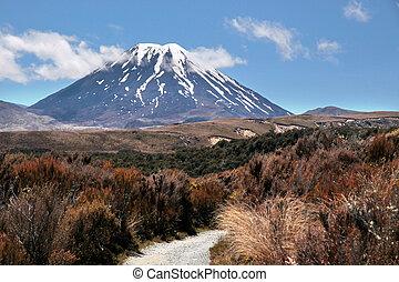 Mount Ngauruhoe in Tongariro National Park, Manawatu-Wanganui, New Zealand