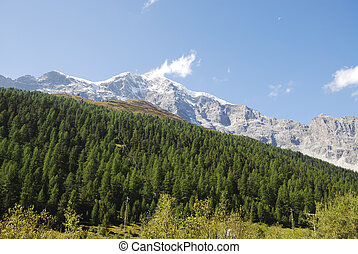 Mount Ortler in the Vinschgau (South Tyrol, Italy)