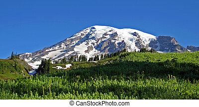 Mt. Rainier in the spring.