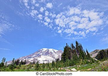 Mount rainier national park in USA