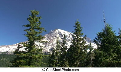 Mount Rainier National Park, Washington, zoom in