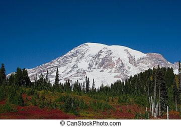 Mount Rainier Over Autumn Valley