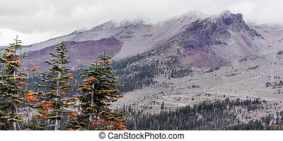 Mount Shasta and pine trees from Grey Butte Trail, Siskiyou County, California, USA