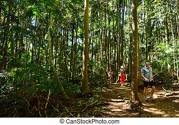 Mount Tamborine Gold Coast Queensland Australia - GOLD...