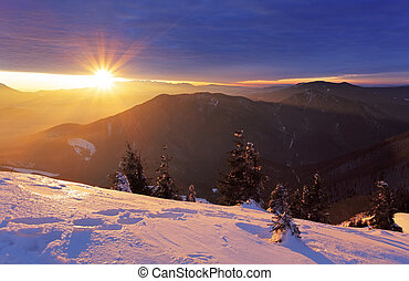 Mountain and forest at winter with sun rays
