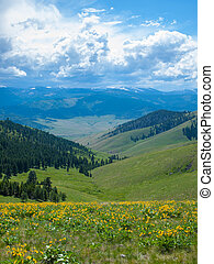 Mountain and Valley View from the National Bison Refuge in...