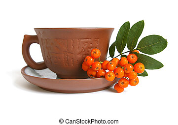 Ceramic cup and mountain ash isolated on a white background