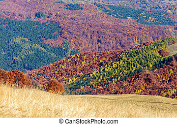 Mountain autumn landscape with colorful forest. Horizontal panoramic view over colorful mountain forests with green, violet, brown, orange, yellow tones.
