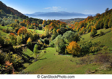 Mountain autumn landscape with colorful forest