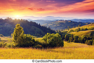 mountain - Beautiful green hills at dusk. Carpathian, ...