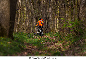 Sport. Mountain Bike cyclist in orange jersey riding single track in beautifull spring forest