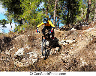 Mountain biker on a stone single track. Mountain biking, Enduro.