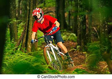 Mountain Biker Riding Down Forest Trail - Mountain Biker...