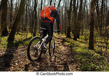 Mountain biker riding on bike in springforest landscape.