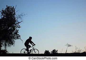 Mountain Biker Silhouette - Silhouette of a mountain biker...