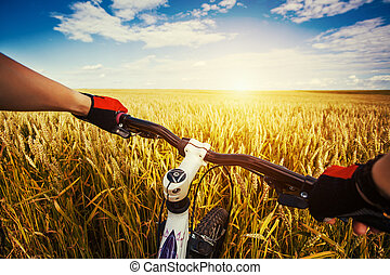 Mountain biking in the field. View from bikers eyes. -...