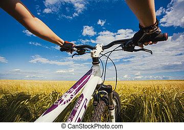 Mountain biking in the field. View from bikers eyes.