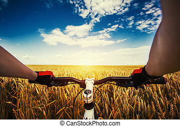 Mountain biking in the field. View from bikers eyes. -...
