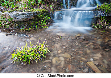 brook - mountain brook in spring time