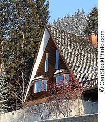 Mountain Cabin - winter scenic