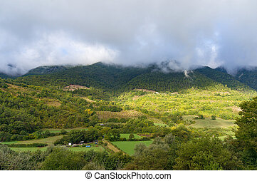 Mountain countryside panorama with green fields