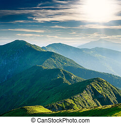 Mountain covered green trees in background of sunny sky
