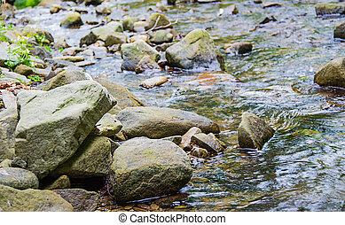 Mountain creek 05