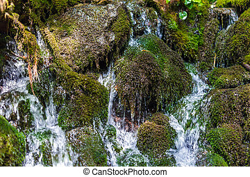 Mountain creek flowing through mossy boulders