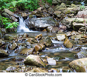 Mountain creek_02 - Creek in Tuscany appennines full of...