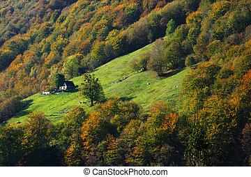 Mountain farm and fall trees
