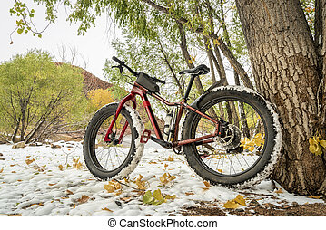 mountain fat bike on a lake shore in fall scenery with snow...