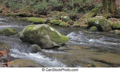 Mountain flowing trout stream - tracking along a mountain...