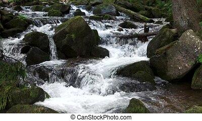 mountain., fluxs, pierres, ruisseau