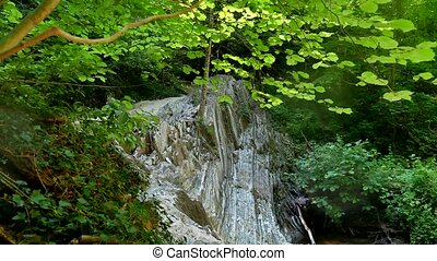Mountain forest cliffs. Mountain the river flows beautiful wild landscape nature