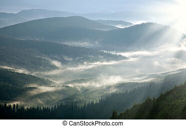 Mountain forest covered with mist, in the rays of dawn sun