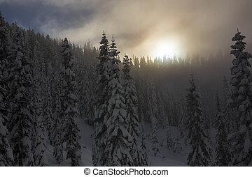 Mountain Forest Ridgeline with Hazy - Winter sun setting on...
