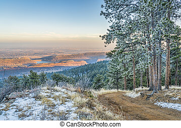 mountain forest road with pine trees covered by frost