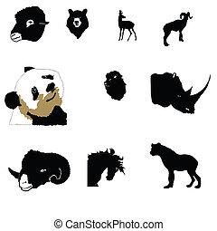mountain-goat, leone, ariete, rinoceronte, arabo, panda, cavallo, iena, capriolo