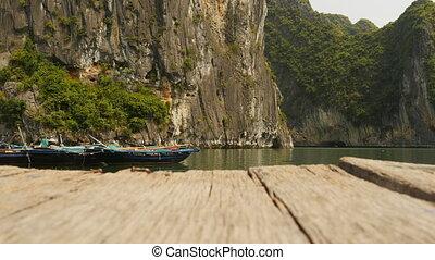 Mountain Ha Long bay wood. Vietnam.