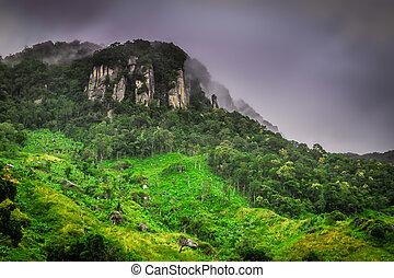 Stunning tropical landscape of Madagascar highlands