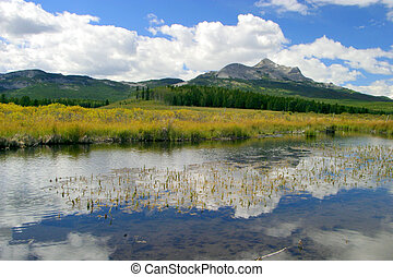 A mountain in southern Alberta with a meadow and a pond
