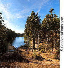 mountain lake and forest, Harz, Germany